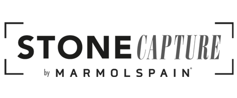 Stone Capture Logo